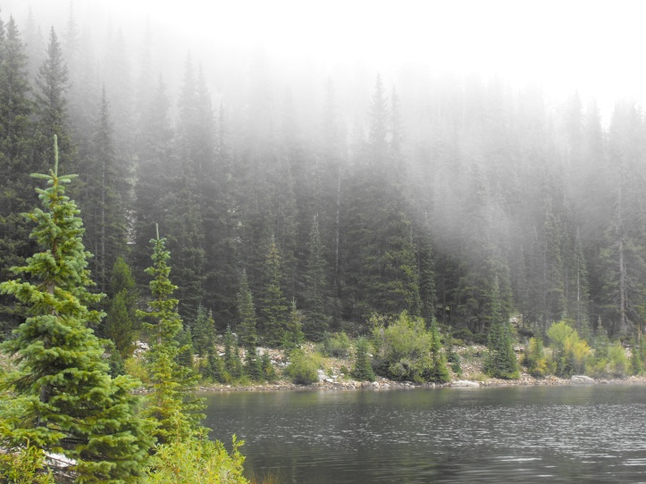 Boss Lake Fog