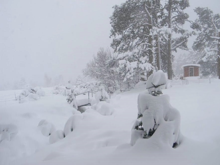 snowy caboose